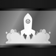 wordpress fast and secured